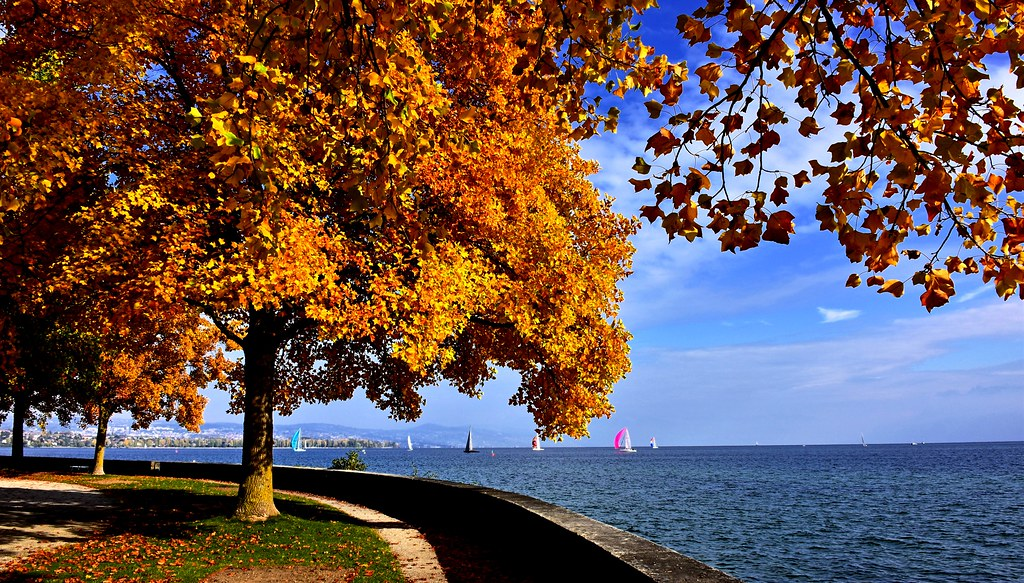 nearby excursions for autumnal season from maison Igor in Morges